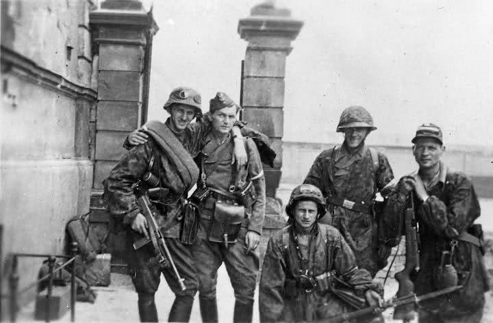Narodowe Siły Zbrojne w Powstaniu Warszawskim